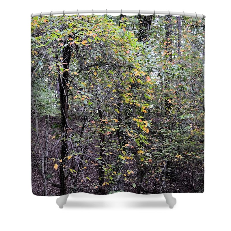 An Early October Eve Shower Curtain featuring the photograph An Early October Eve by Maria Urso