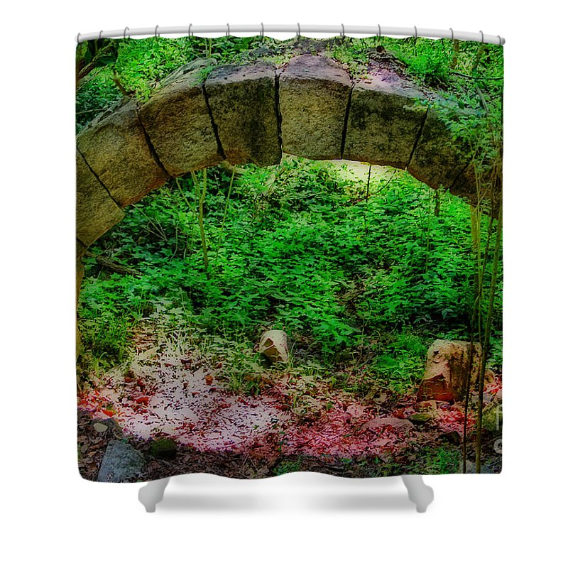Scenic Tours Shower Curtain featuring the photograph Ancient Arch by Skip Willits