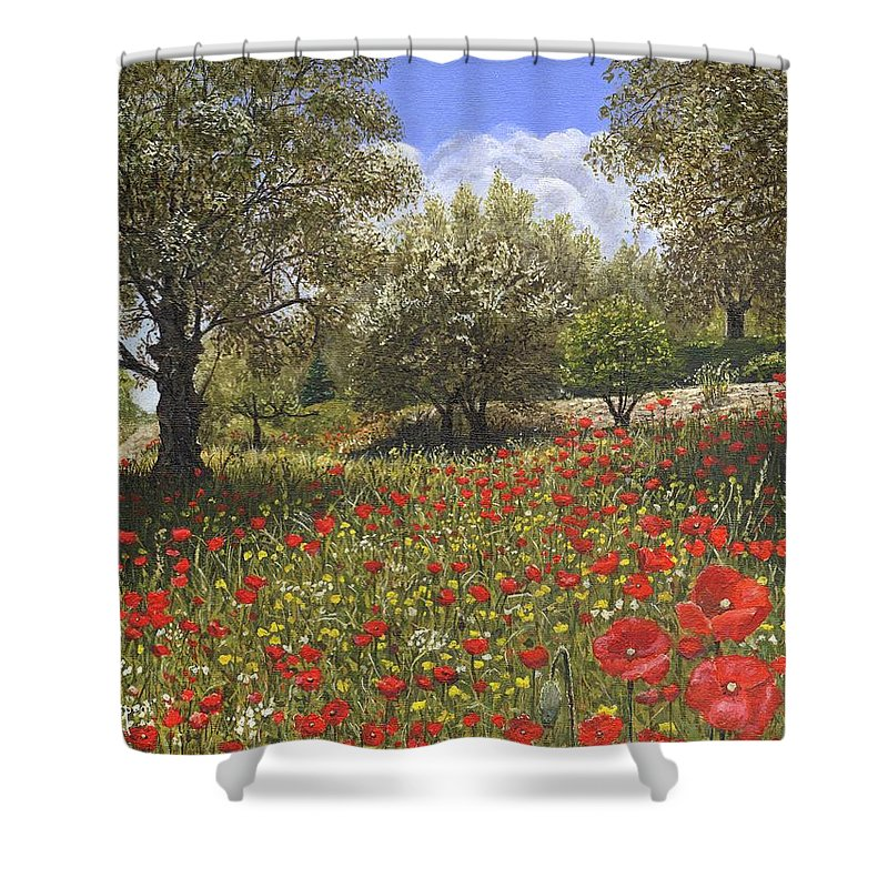 Landscape Shower Curtain featuring the painting Andalucian Poppies by Richard Harpum