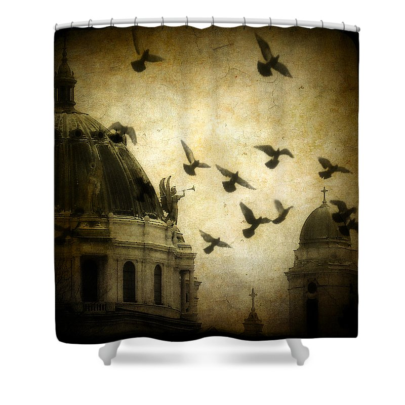 Vintage Colors Shower Curtain featuring the photograph Angel's Melody by Gothicrow Images