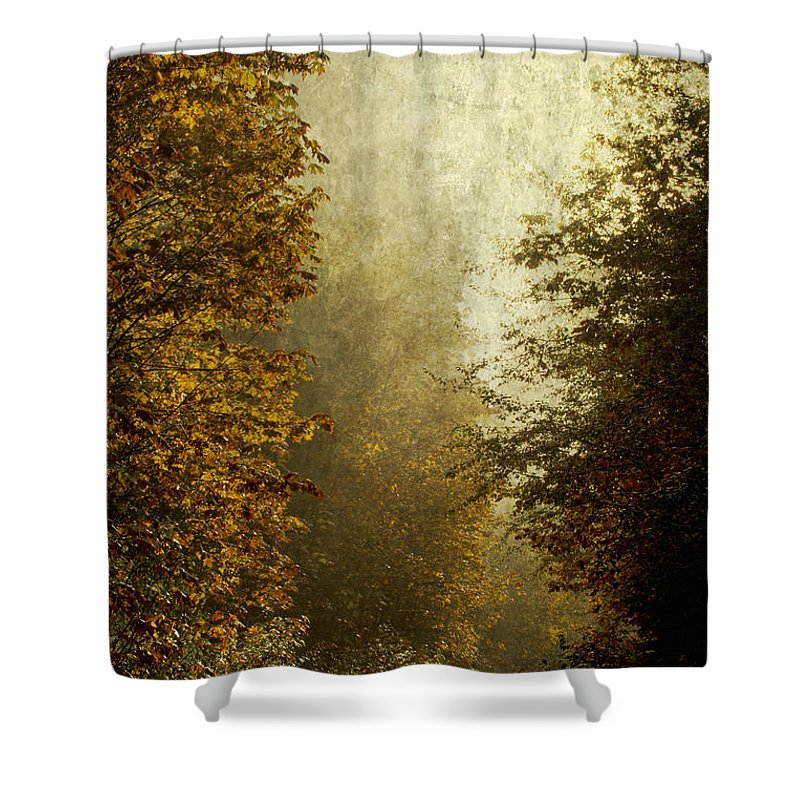 Fall Color Shower Curtain featuring the photograph Another Road Travelled by Belinda Greb
