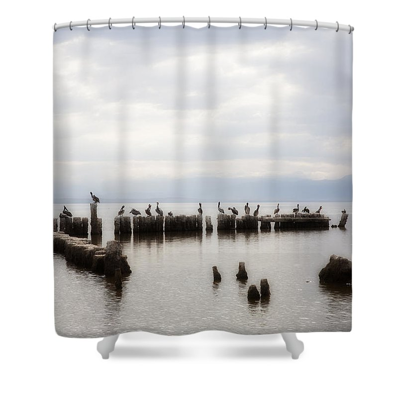 Saltn Sea Shower Curtain featuring the photograph Apostles Of The Salton Sea by Hugh Smith