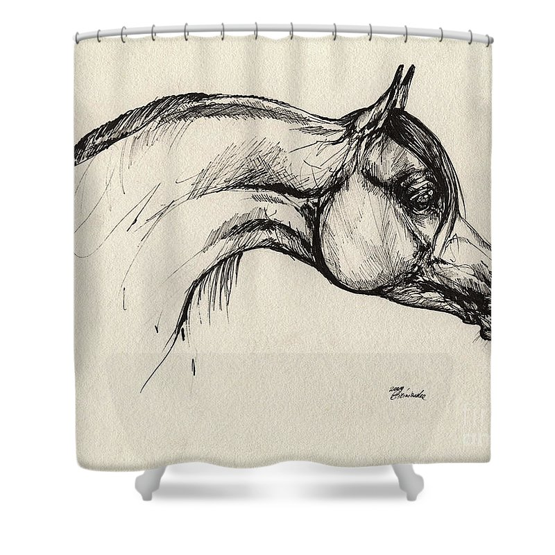 Horse Shower Curtain featuring the drawing Arabian Horse Drawing 30 by Angel Ciesniarska