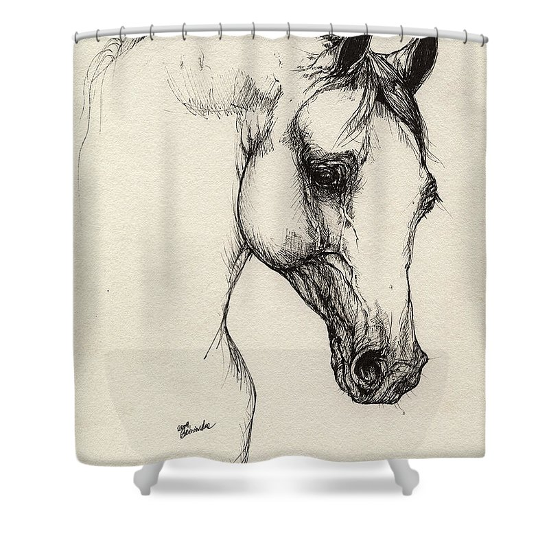 Horse Shower Curtain featuring the drawing Arabian Horse Drawing 32 by Angel Ciesniarska
