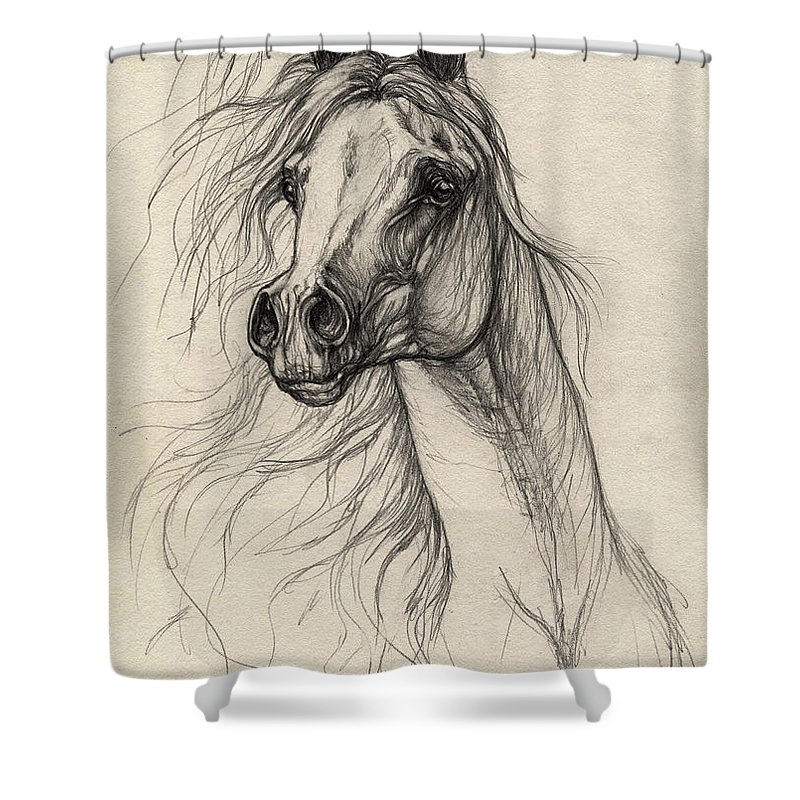 Horse Shower Curtain featuring the drawing Arabian Horse Drawing 37 by Angel Ciesniarska