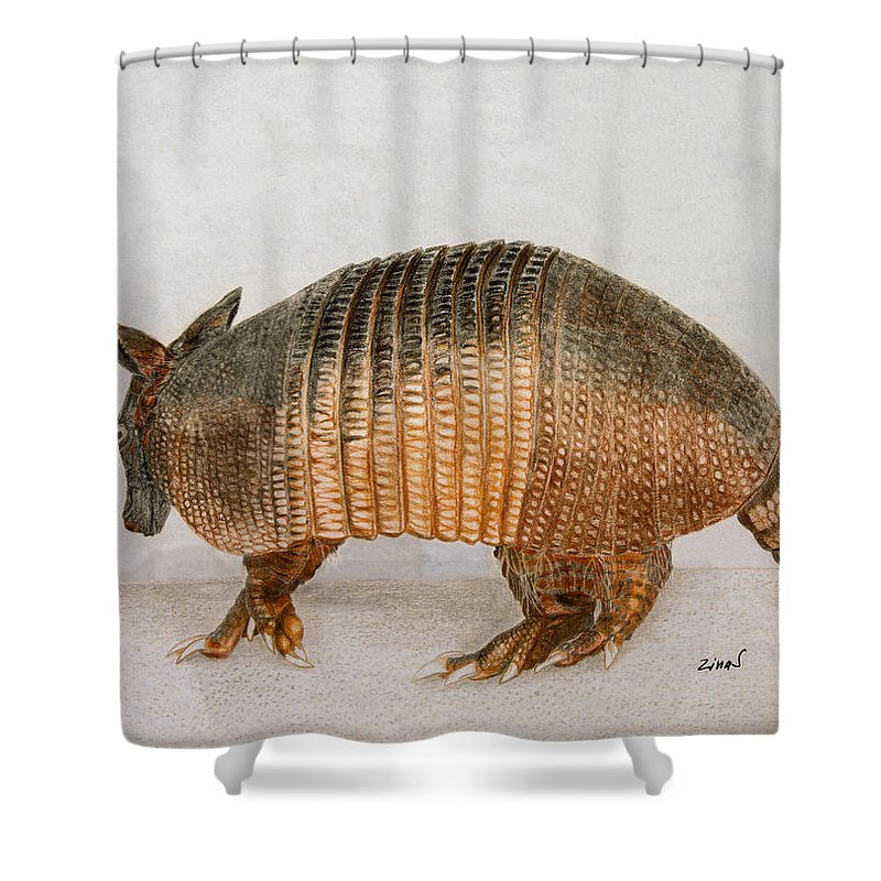 Armadillo Shower Curtain featuring the drawing Armadillo by Zina Stromberg