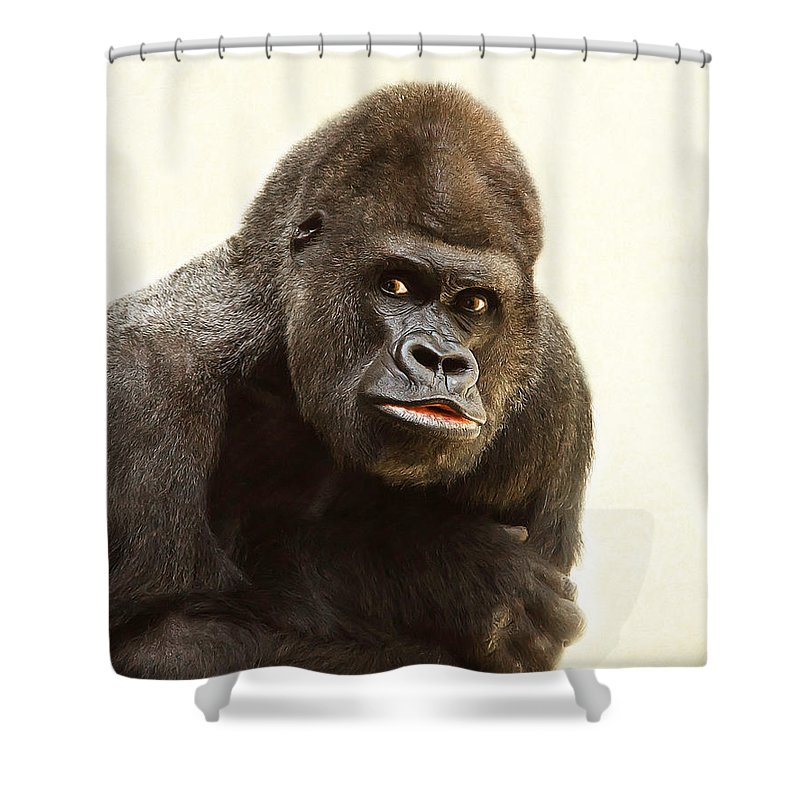 Wildlife Shower Curtain featuring the photograph Asking Gorilla by Christine Sponchia