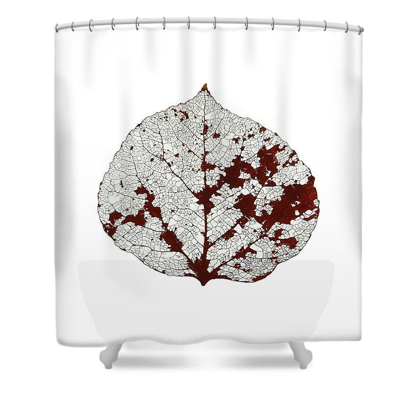 Aspen Leaf Shower Curtain featuring the digital art Aspen Leaf Skeleton 2 by Agustin Goba
