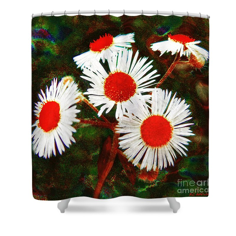 Asters Shower Curtain featuring the painting Asters Bright And Bold by RC DeWinter