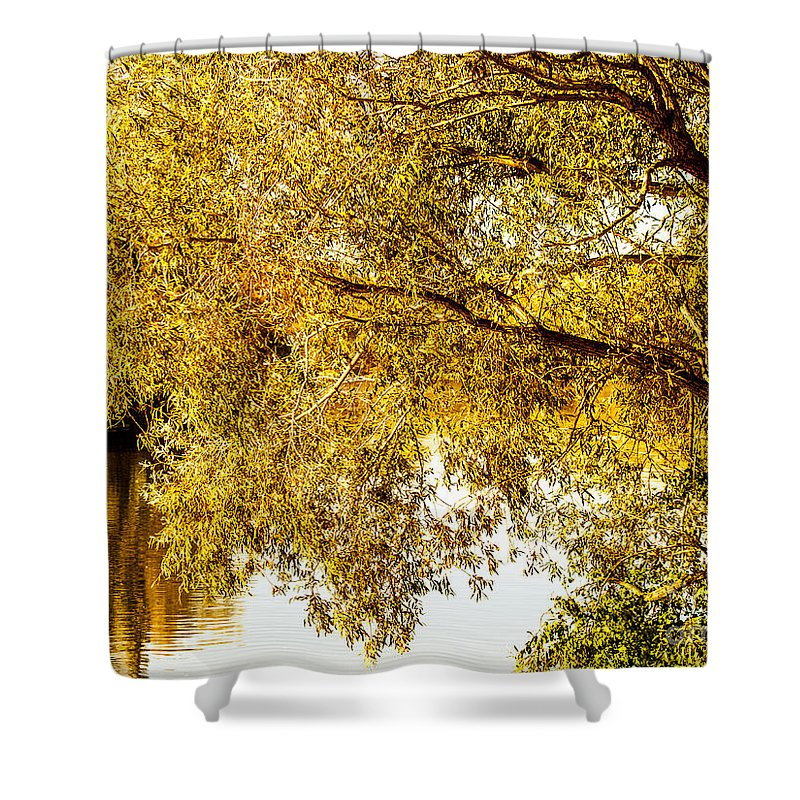 Autumn Shower Curtain featuring the photograph At The Lake -37 by David Fabian
