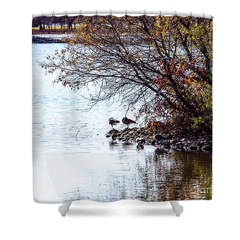 Wascana Shower Curtain featuring the photograph At The Lake-40 by David Fabian
