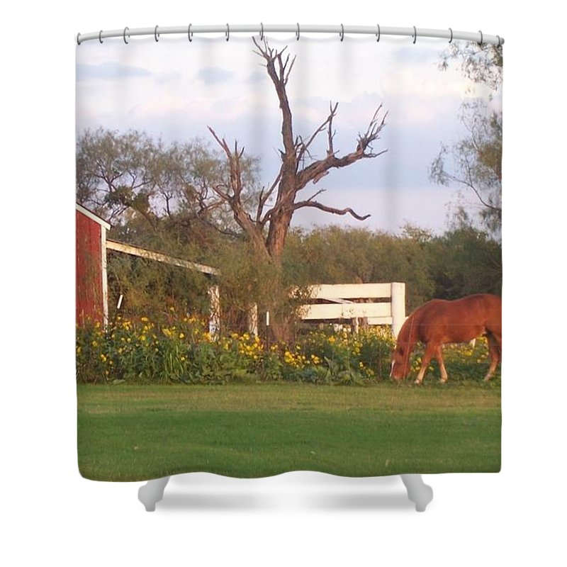 Blue Shower Curtain featuring the photograph Autumn Abundance by Susan Williams