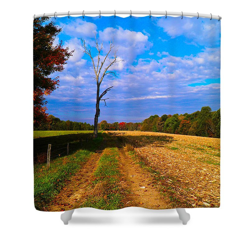 Tree Shower Curtain featuring the photograph Autumn And The Tree by Nick Kirby