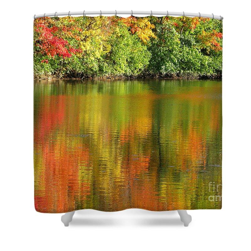 Autumn Shower Curtain featuring the photograph Autumn Brilliance by Ann Horn