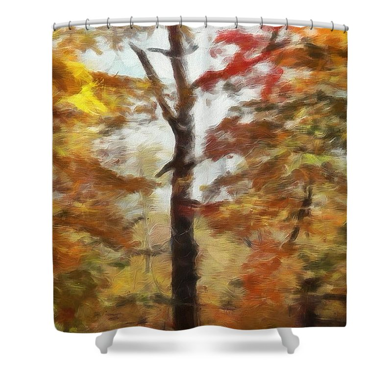 Autumn Canvas Shower Curtain featuring the painting Autumn Canvas by Dan Sproul
