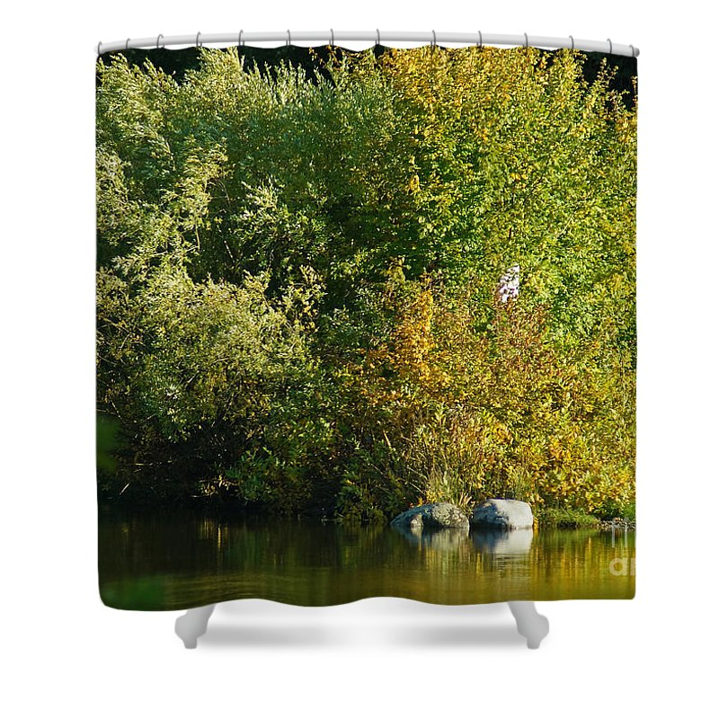 Nature Shower Curtain featuring the photograph Autumn Colors 1 by Rudi Prott