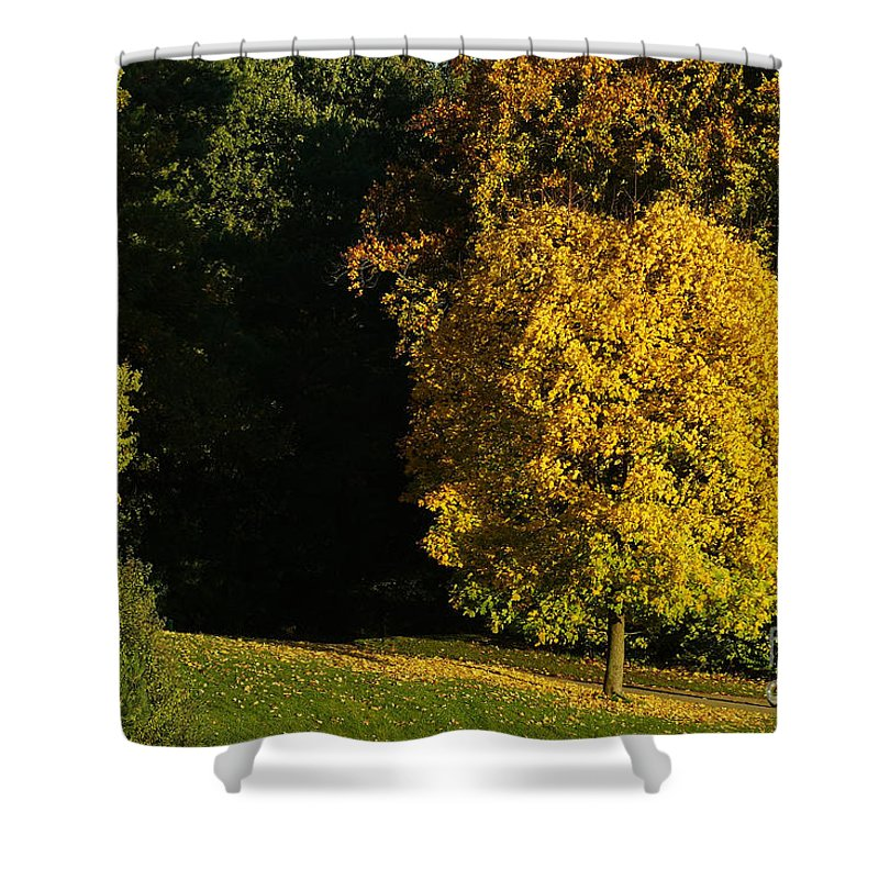 Nature Shower Curtain featuring the photograph Autumn Colors 7 by Rudi Prott