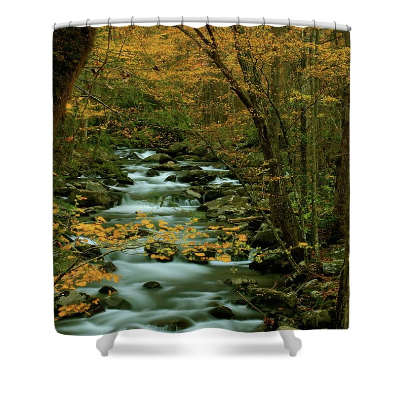 Tennessee Shower Curtain featuring the photograph Autumn Greenbriar Cascade by Nunweiler Photography