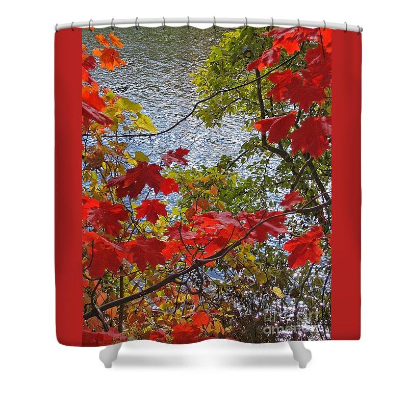 Autumn Shower Curtain featuring the photograph Autumn Lake by Ann Horn