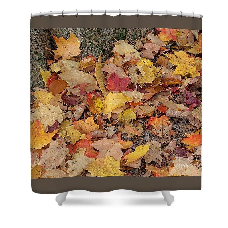 Autumn Shower Curtain featuring the photograph Autumn Leaves by Ann Horn