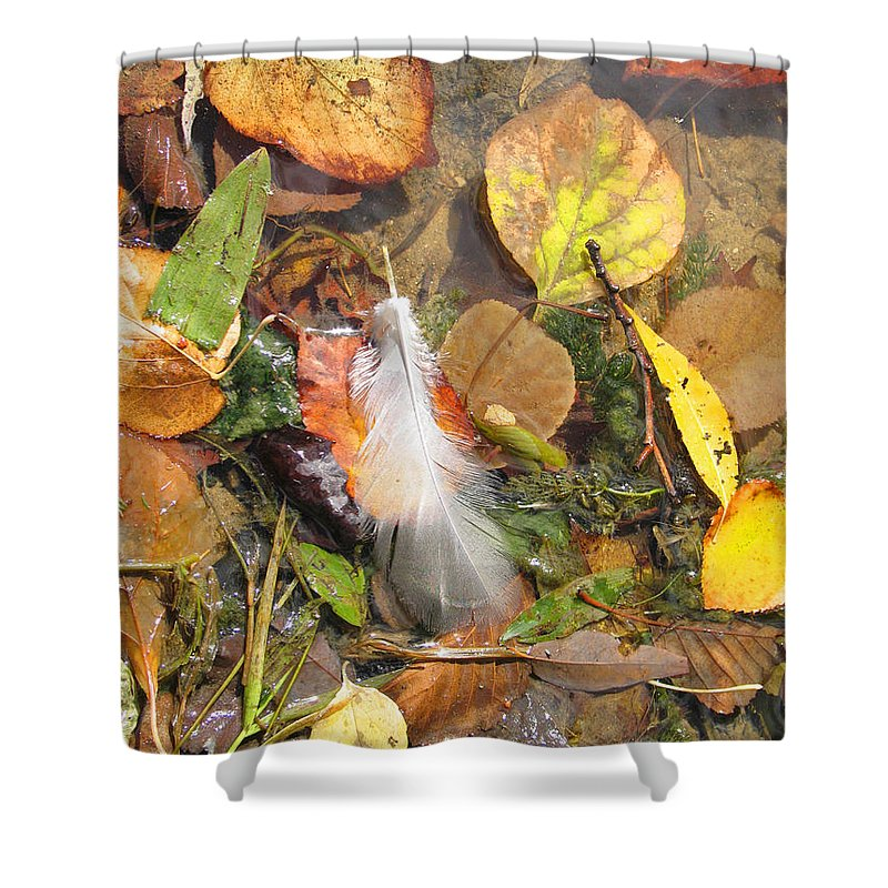 Autumn Shower Curtain featuring the photograph Autumn Leavings by Ann Horn