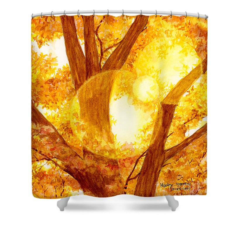 Tree Shower Curtain featuring the painting Autumn Light by Hailey E Herrera