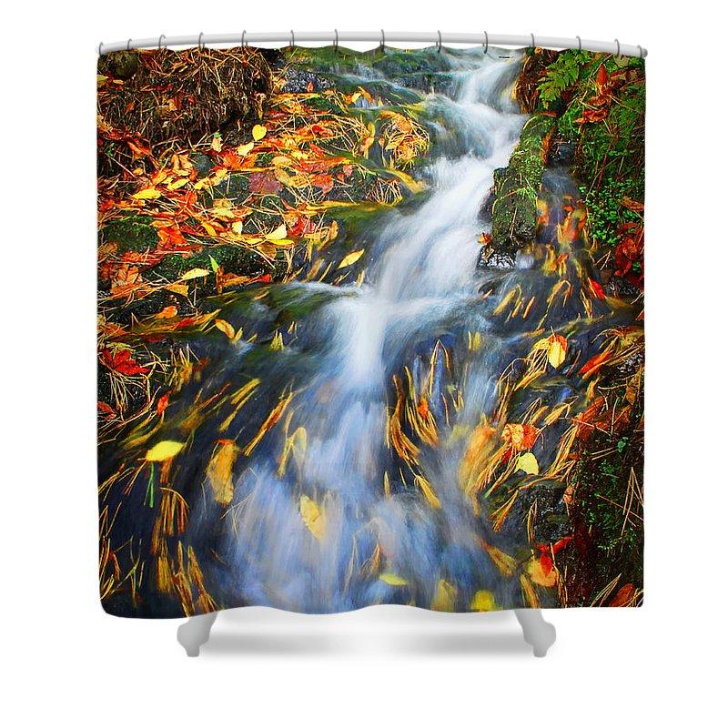 Autumn Mountain Stream Shower Curtain featuring the photograph Autumn Mountain Stream by Carolyn Derstine