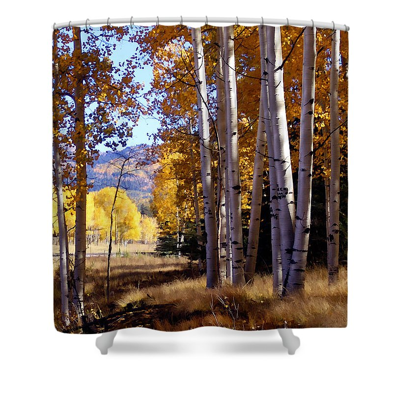 Trees Shower Curtain featuring the photograph Autumn Paint Chama New Mexico by Kurt Van Wagner