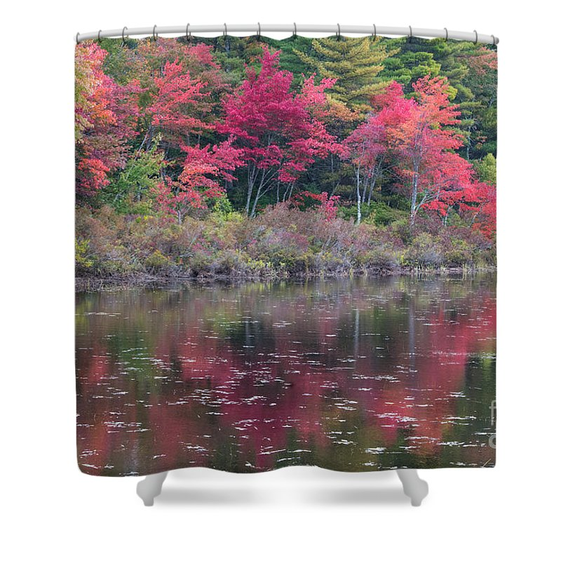 Autumn Shower Curtain featuring the photograph Autumn Reflection by John Greco
