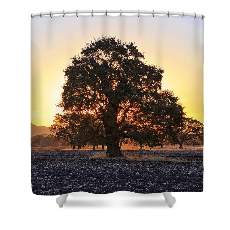 Patricia Sanders Shower Curtain featuring the photograph Autumn Sunrise by Her Arts Desire