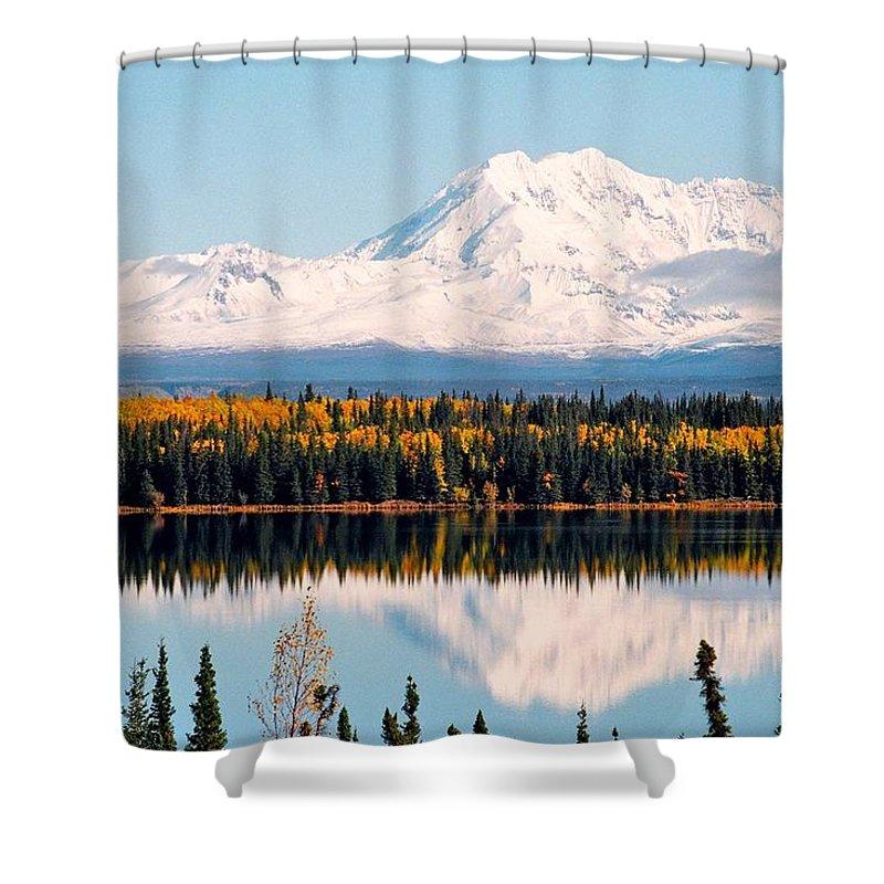 Alaska Shower Curtain featuring the photograph Autumn View Of Mt. Drum - Alaska by Juergen Weiss