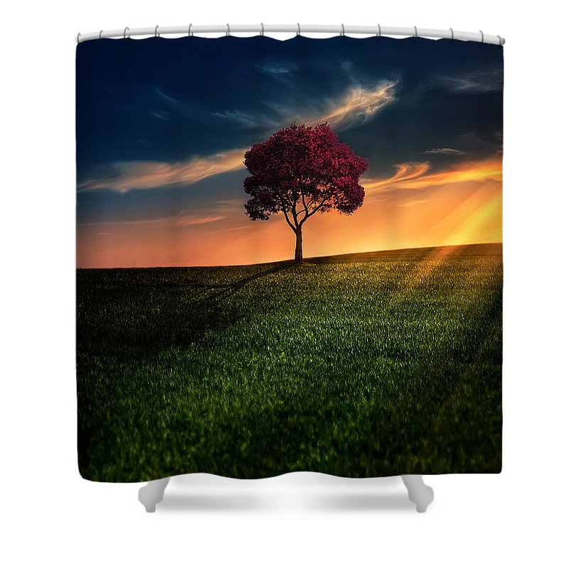 Agriculture Shower Curtain featuring the photograph Awesome Solitude by Bess Hamiti