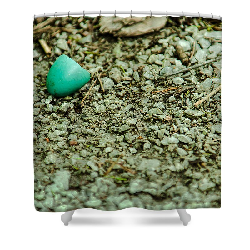 Heron Heaven Shower Curtain featuring the photograph Baby Robin by Edward Peterson