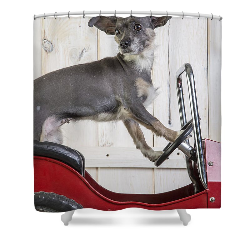 Car Shower Curtain featuring the photograph Baby You Can Drive My Car by Edward Fielding
