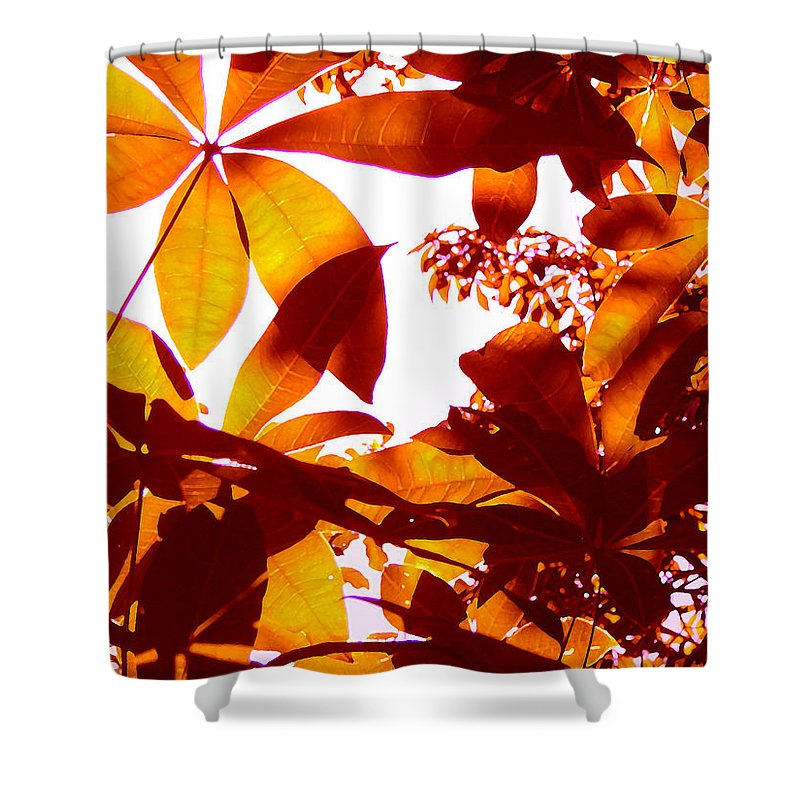 Garden Shower Curtain featuring the painting Backlit Tree Leaves 2 by Amy Vangsgard
