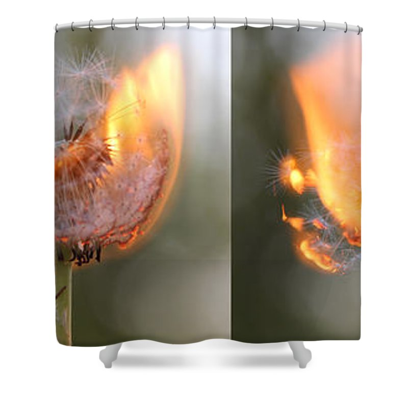 Fire Shower Curtain featuring the photograph Backyard Fun by Adrienne Franklin