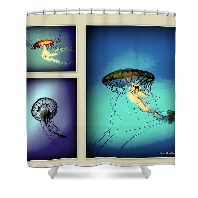 Animal Shower Curtain featuring the photograph Baltimore Belles by Danielle Parent