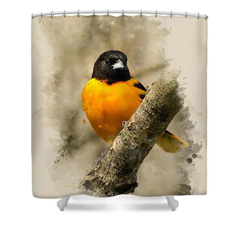 Baltimore Oriole Shower Curtain featuring the mixed media Baltimore Oriole Watercolor Art by Christina Rollo