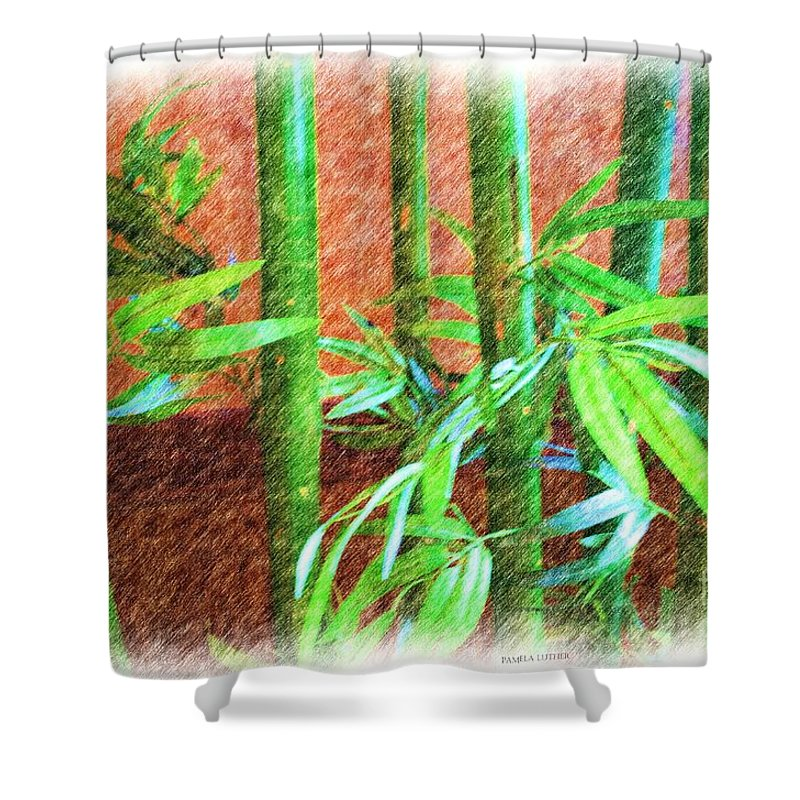 Quincy Illinois Shower Curtain featuring the photograph Bamboo #1 by Luther Fine Art
