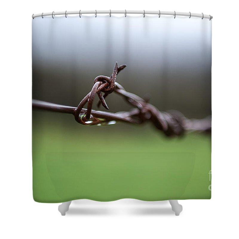 Victoria Shower Curtain featuring the photograph Barbed Wire by Ray Warren