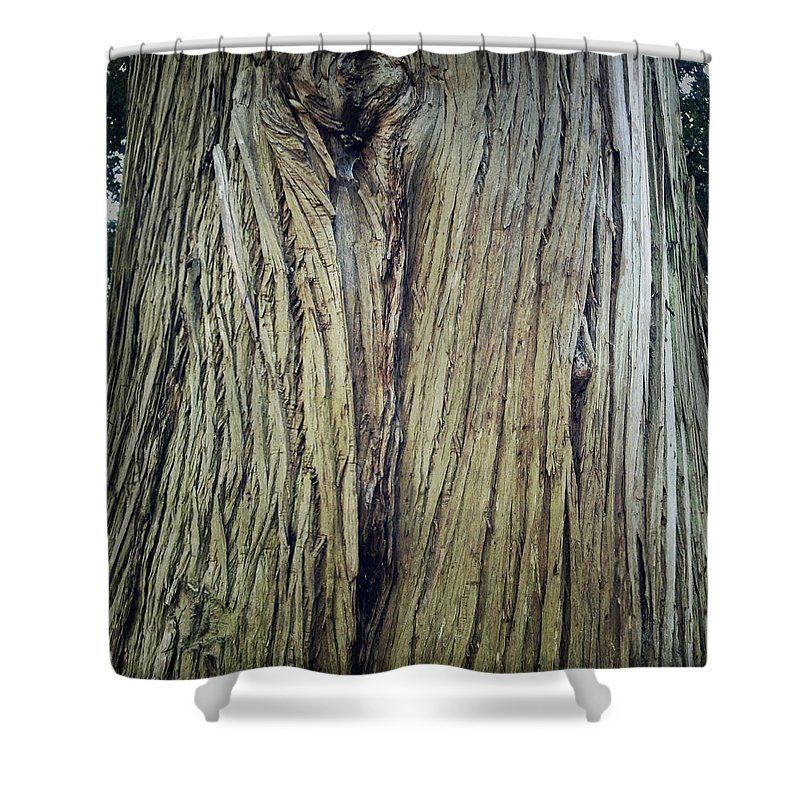 Tree Shower Curtain featuring the photograph Bark by Les Cunliffe