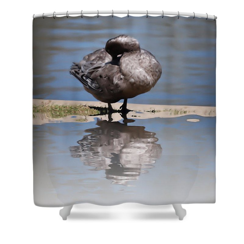 Duck Shower Curtain featuring the photograph Bath Time by Scott Polley