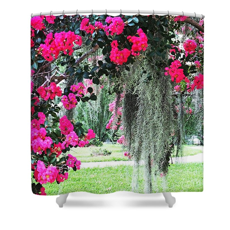 Flowers Shower Curtain featuring the photograph Baton Rouge Louisiana Crepe Myrtle And Moss At Capitol Park by Lizi Beard-Ward