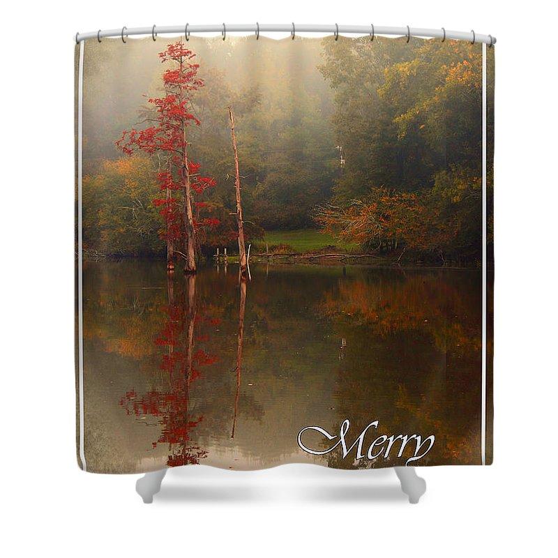 Christmas Shower Curtain featuring the photograph Bayou Christmas by Karen Beasley