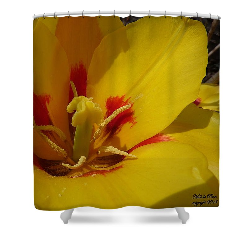 Flower Photograph Shower Curtain featuring the photograph Be Drawn In - Signed by Michele Penn