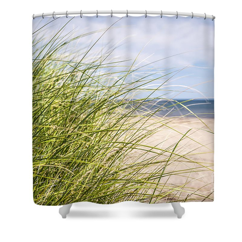 Grass Shower Curtain featuring the photograph Beach Grass by Elena Elisseeva