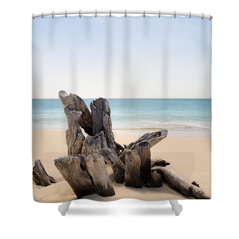 Antigua And Barbuda Shower Curtain featuring the photograph Beach Trunk by Ferry Zievinger