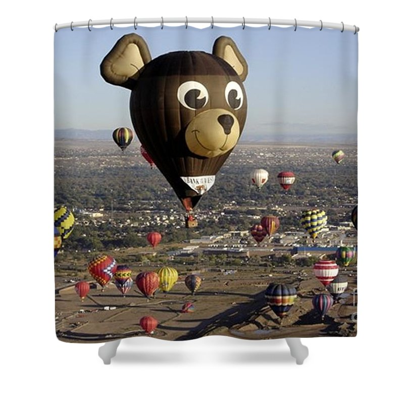 Albuquerque Shower Curtain featuring the photograph Bear by Mary Rogers