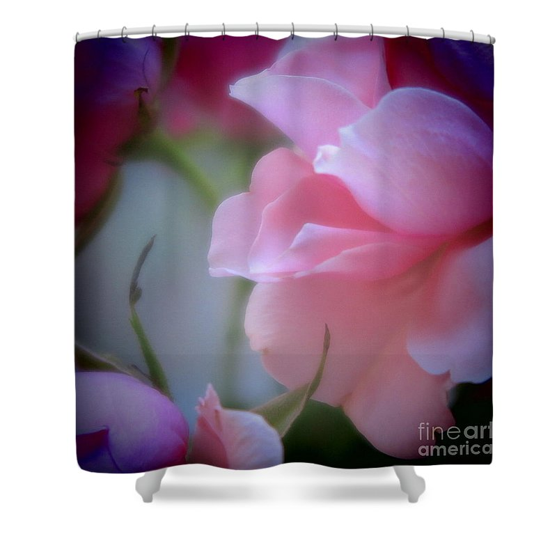 Floral Shower Curtain featuring the photograph Beautiful Lavender And Purple Roses by Tara Shalton