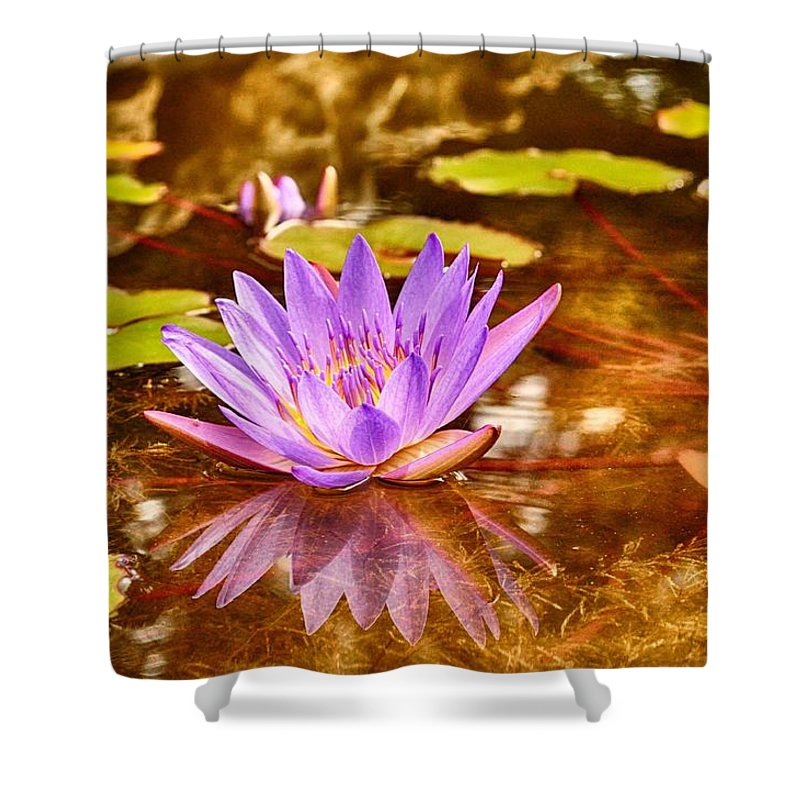 Reflection Photograph Shower Curtain featuring the photograph Beautiful Reflections by Kristina Deane